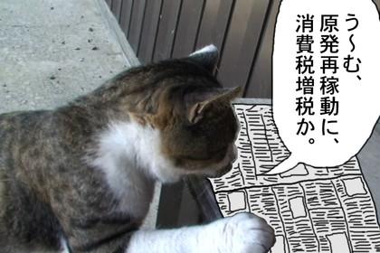 Nodakubi001_2