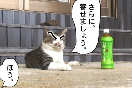 Daigo011_3