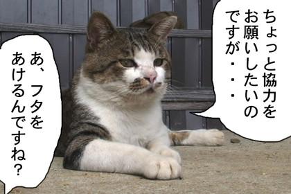 Daigo015_3