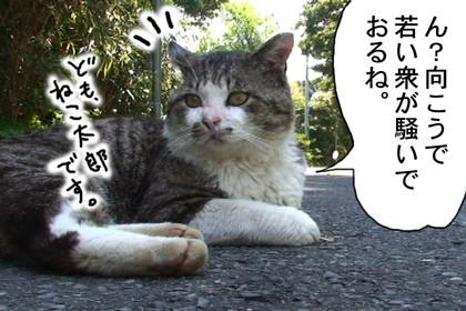 Karasu001_5