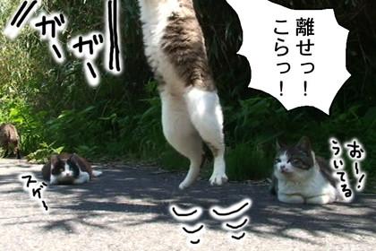 Karasu006_3