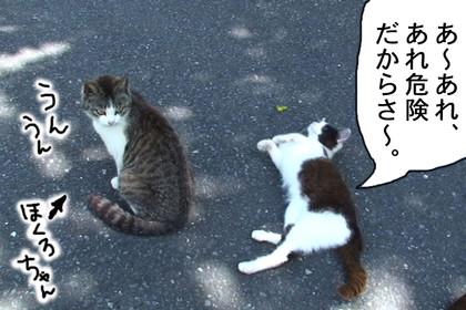 Jyoure003_2