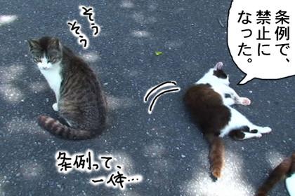 Jyourei004_2