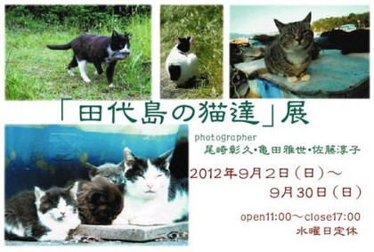 Tashiro01_convert_20120816110643