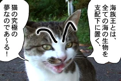 Kaizoku007