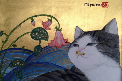 Miyanokun001_2