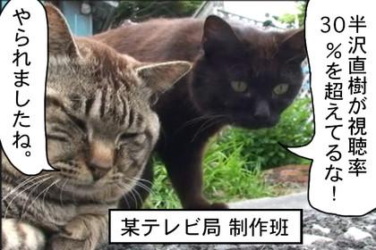 Hanzawa01_2
