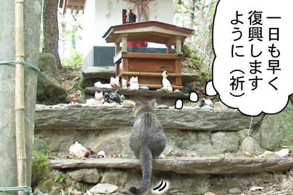 Nekotaro311_2