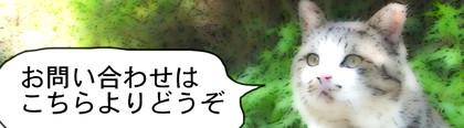 Otoiawase002