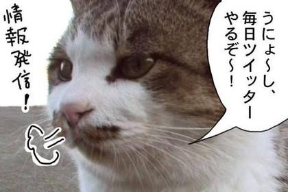 Twitter10_3