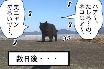 Twitter11_2
