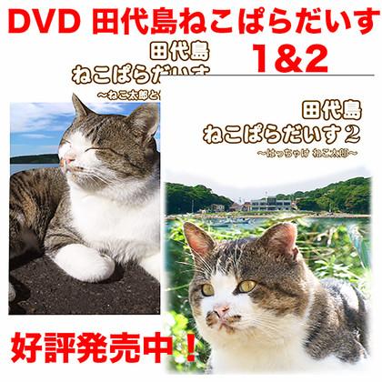 Dvd000999_2